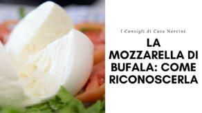 come riconoscere la mozzarella di bufala